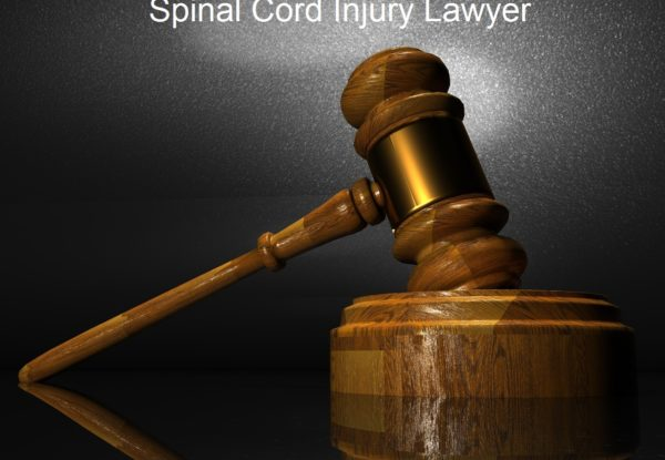 image for Spinal cord injuries law